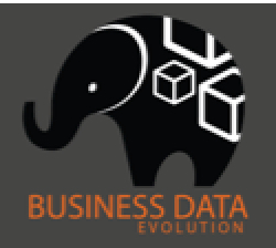 Business Data Evolution